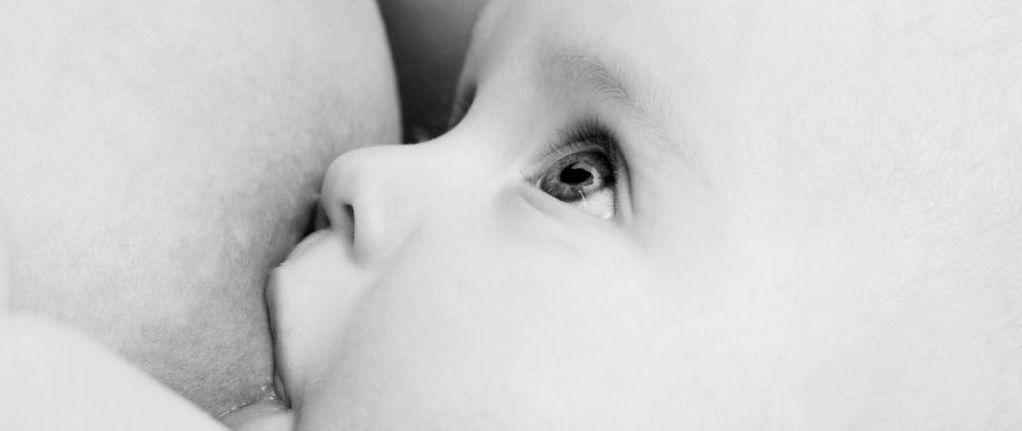 Stillen und Füttern Baby Sprechstunde Elternhaus Hamburg